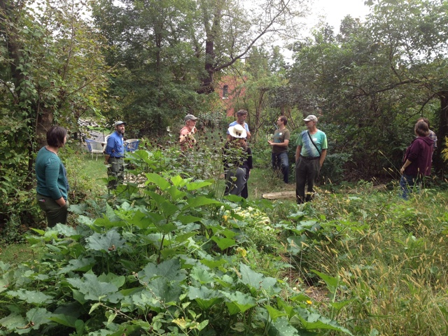 Permaculture Design Workshop at Lillie House