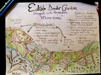 Permaculture Edible Border Design Sketch