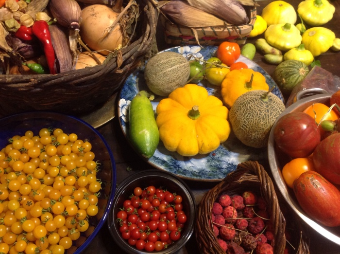 A Late Summer Permaculture Harvest at Lillie House